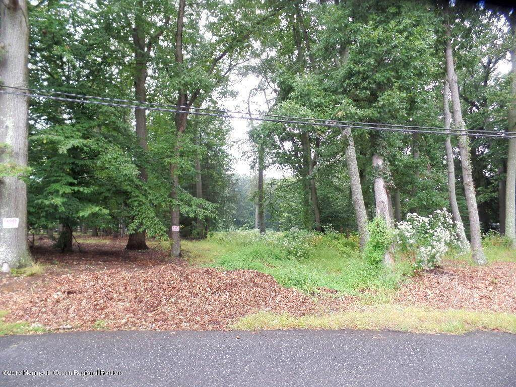 Land for Sale at 229 Heyers Mill Road Colts Neck, New Jersey 07722 United States