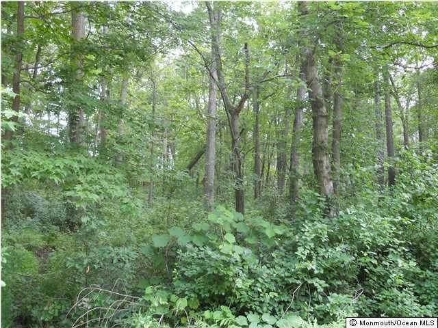 Land for Sale at Tennent Road Marlboro, New Jersey 07746 United States