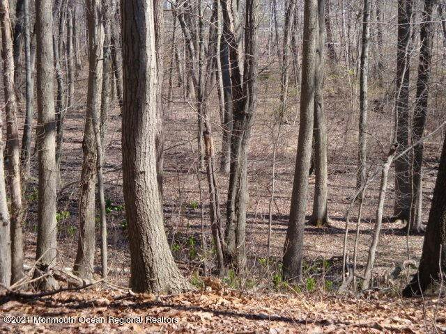 8. Land for Sale at 105 Nolan Road Morganville, New Jersey 07751 United States