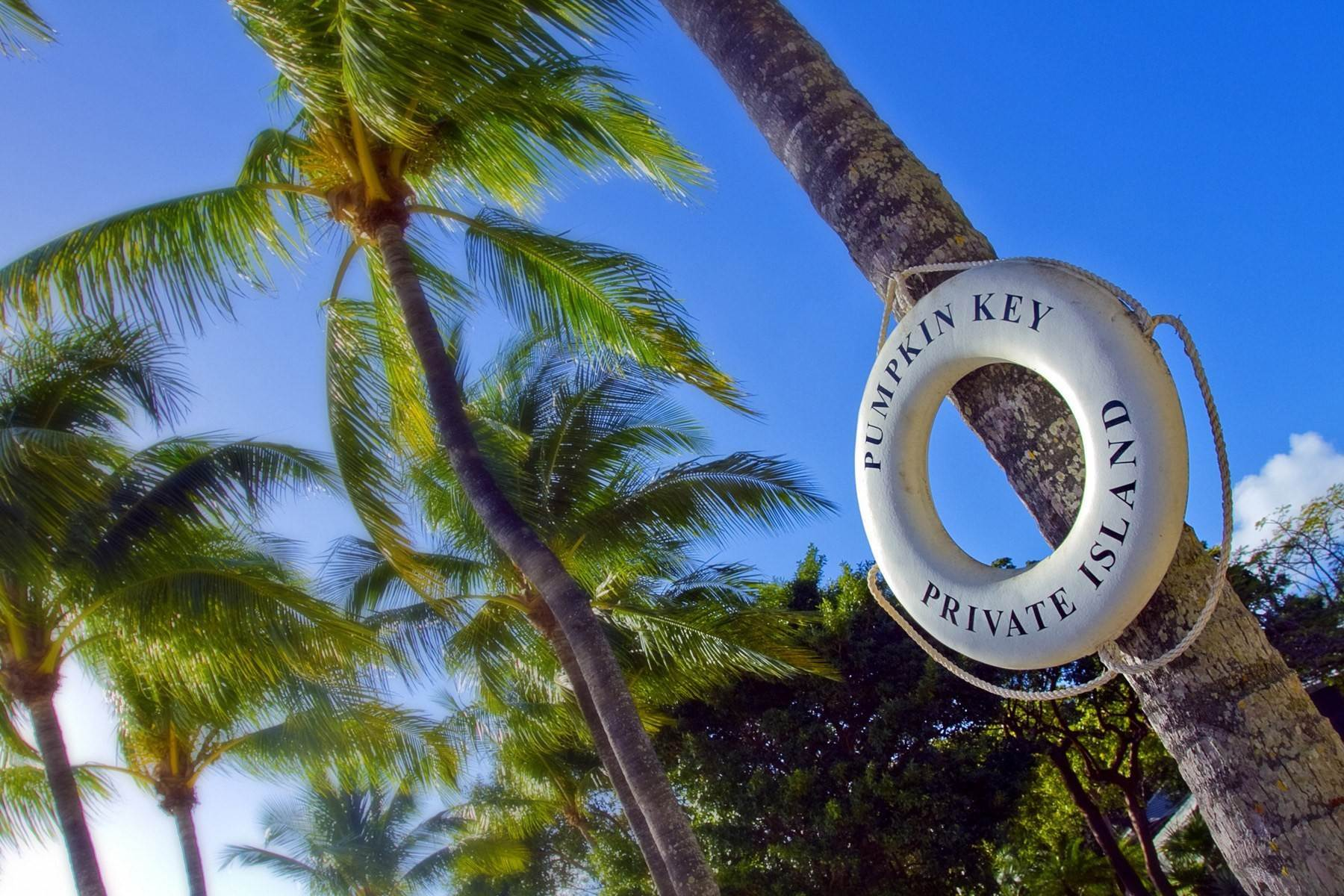 13. Property for Sale at Pumpkin Key - Private Island, Key Largo, FL Pumpkin Key - Private Island Key Largo, Florida 33037 United States